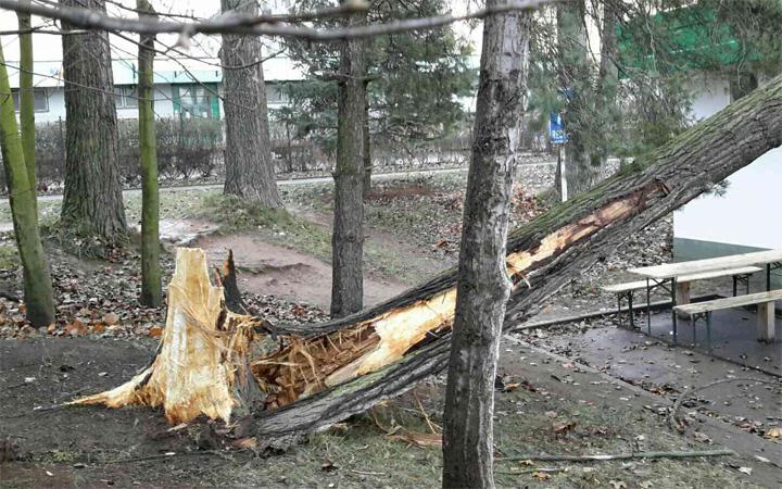 161212_hasici-odstranovali-nasledky-silneho-vetru