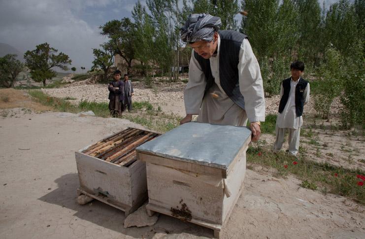 15 let ČvT v Aghánistánu